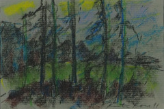 Metsäpelto 1991